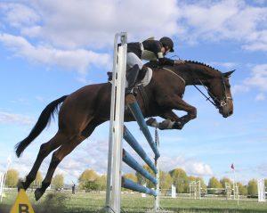 paardensport-bundelt-krachten-in-gemeente-nuth-paardensport-nuth